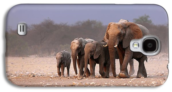 Elephant Herd Galaxy S4 Case by Johan Swanepoel