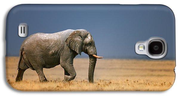 Bass Galaxy S4 Case - Elephant In Grassfield by Johan Swanepoel