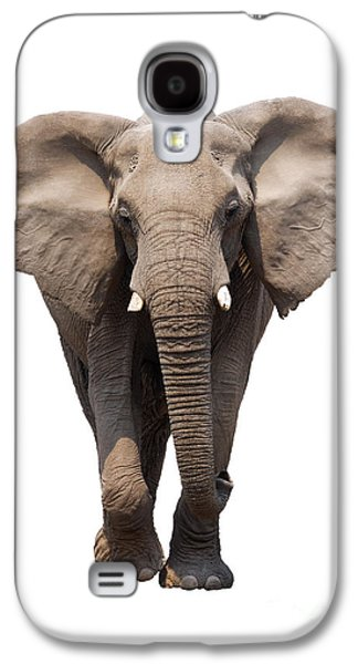 Elephant Isolated Galaxy S4 Case by Johan Swanepoel
