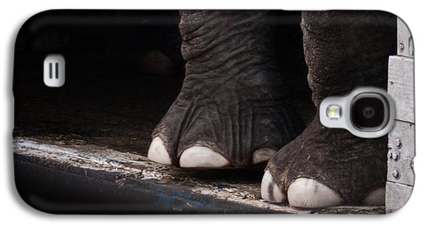 Elephant Toes Galaxy S4 Case by Bob Orsillo