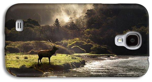 Elk In Sinkyone Wilderness Galaxy S4 Case by Leland D Howard