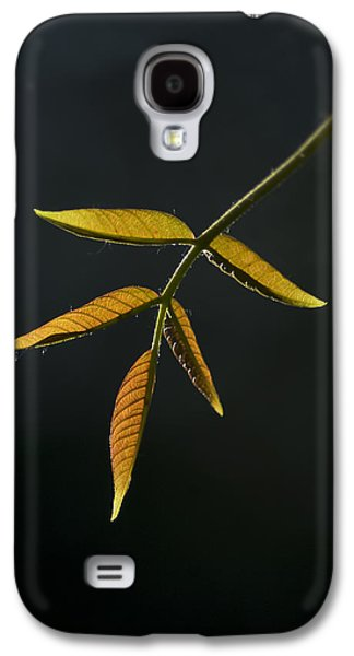 Galaxy S4 Case featuring the photograph Emergence by Yulia Kazansky