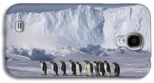 Emperor Penguins Walking Antarctica Galaxy S4 Case
