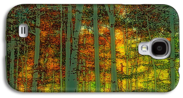 Enchanted Forest In Autumn Galaxy S4 Case