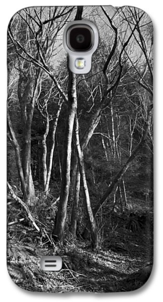 Galaxy S4 Case featuring the photograph Enchanted Forest by Yulia Kazansky