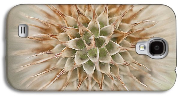 Enchanted Thistle Galaxy S4 Case