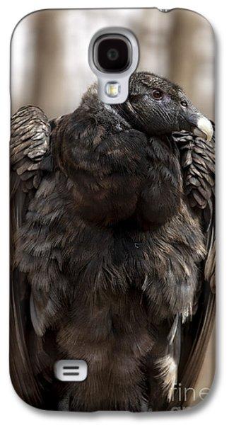 Condor Galaxy S4 Case - Endangered Andean Condor by Brandon Alms