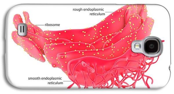 Endoplasmic Reticulum Galaxy S4 Case