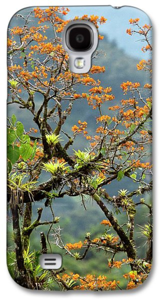 Erythrina Poeppigiana Tree And Epiphytes Galaxy S4 Case
