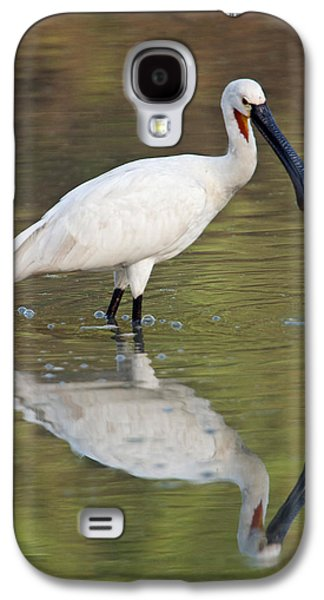 Spoonbill Galaxy S4 Case - Eurasian Spoonbill Platalea Leucorodia by Panoramic Images