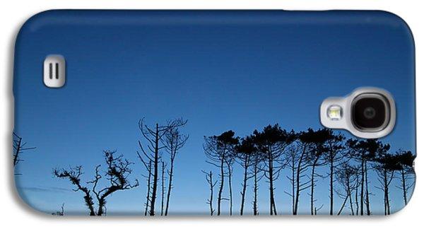 Evening Tree Blues Galaxy S4 Case