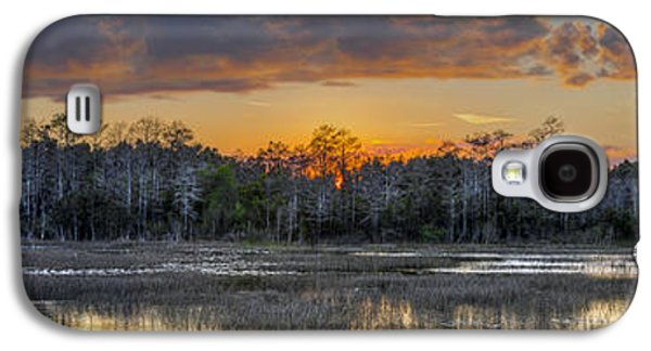Waterscape Galaxy S4 Cases - Everglades Panorama Galaxy S4 Case by Debra and Dave Vanderlaan