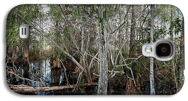 Everglades Swamp-1 Galaxy S4 Case