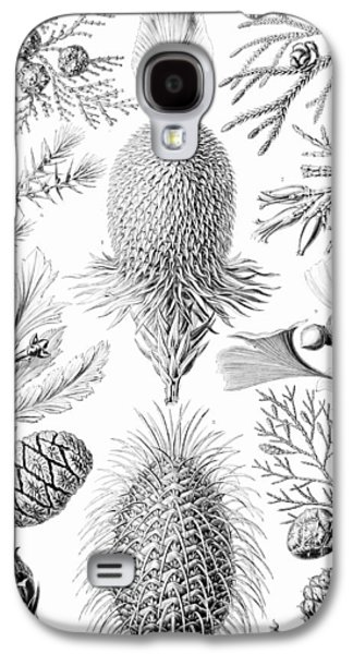 Examples Of Coniferae From Kunstformen Galaxy S4 Case