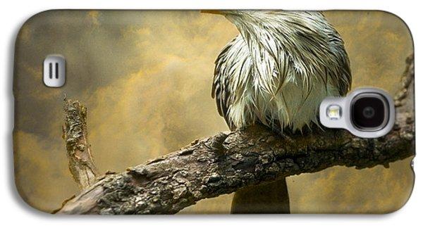 Cuckoo Galaxy S4 Case - Exotic Bird - Guira Cuckoo Bird by Gary Heller