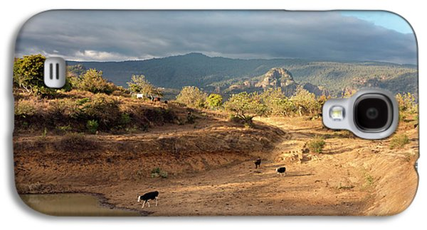 Extensive Cow Farming With Water Hole Galaxy S4 Case