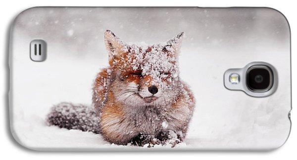 Fairytale Fox II Galaxy S4 Case by Roeselien Raimond