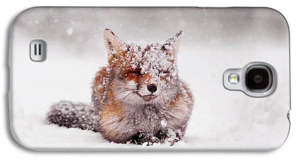 Fairytale Fox II Galaxy S4 Case