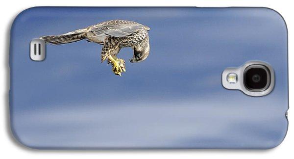 Falcon With Prey Galaxy S4 Case