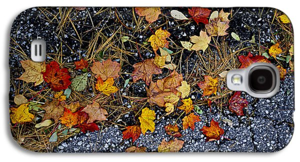 Fall Leaves On Pavement Galaxy S4 Case