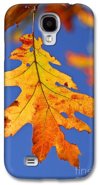 Fall Oak Leaf Galaxy S4 Case by Elena Elisseeva