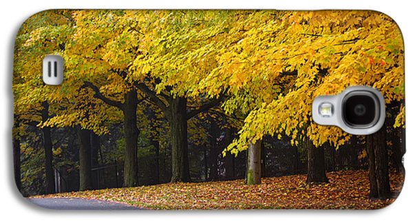 Fall Road And Trees Galaxy S4 Case by Elena Elisseeva