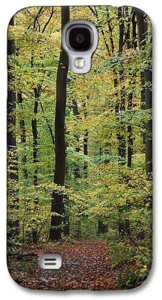 Fall Trail Galaxy S4 Case
