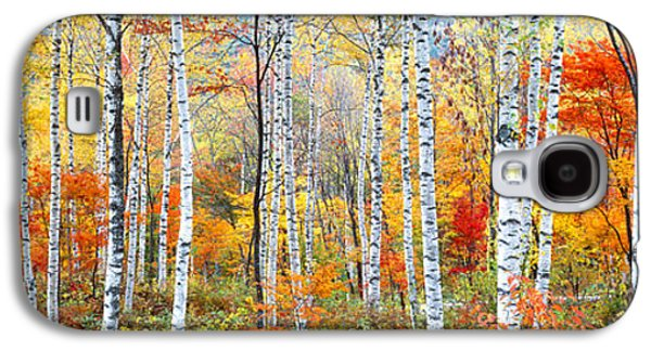 Fall Trees, Shinhodaka, Gifu, Japan Galaxy S4 Case by Panoramic Images