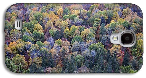 Fall Treetops Galaxy S4 Case