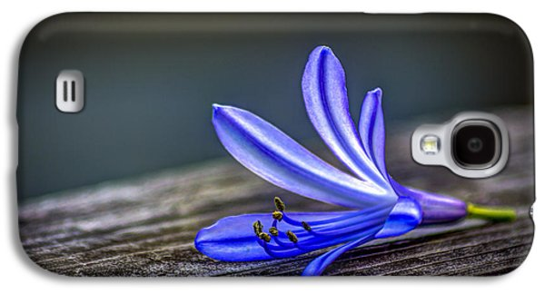 Lily Galaxy S4 Case - Fallen Beauty by Marvin Spates