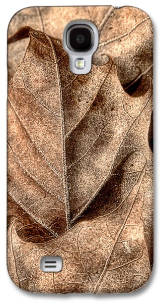 Fallen Leaves I Galaxy S4 Case