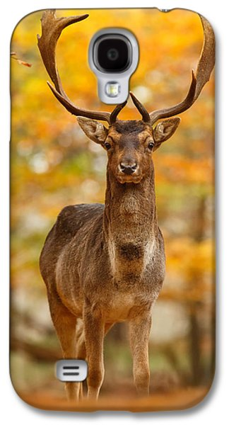 Fallow Deer In Autumn Forest Galaxy S4 Case by Roeselien Raimond