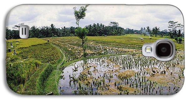 Farmers Working In A Rice Field, Bali Galaxy S4 Case