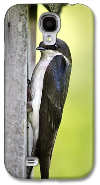 Tree Swallow On Nestbox Galaxy S4 Case