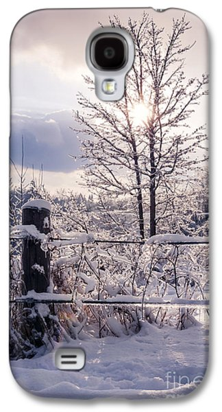 Fence And Tree Frozen In Ice Galaxy S4 Case by Elena Elisseeva