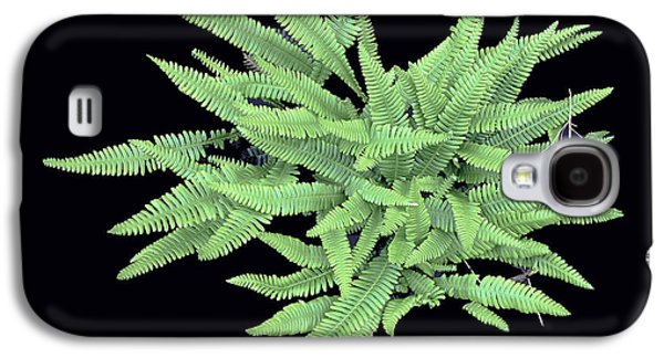 Fern Galaxy S4 Case by Bill Thomson