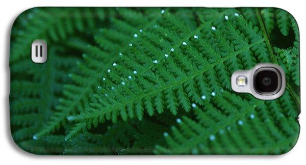 Fern Galaxy S4 Case
