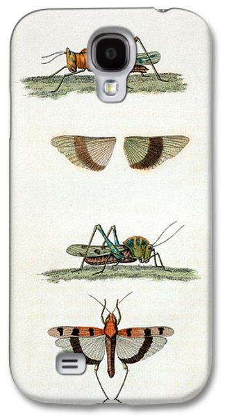 Field Crickets Galaxy S4 Case by General Research Division/new York Public Library