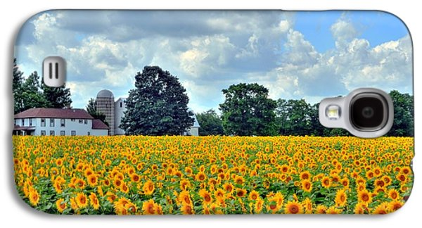 Field Of Sunflowers Galaxy S4 Case by Kathleen Struckle