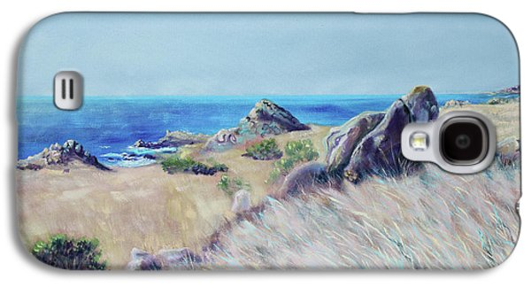 Fields With Rocks And Sea Galaxy S4 Case