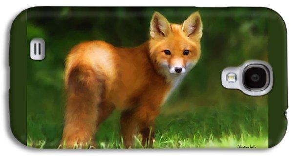 Fiery Fox Galaxy S4 Case