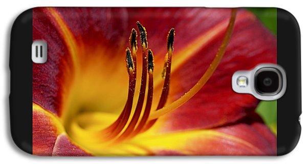 Fiery Lily Galaxy S4 Case by Rona Black