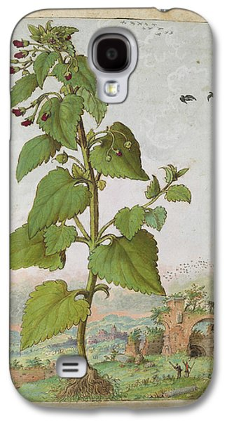 Figwort (scrophularia Sp.) Galaxy S4 Case by British Library