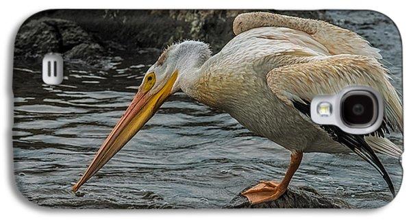 Fishing Pelican Galaxy S4 Case by Paul Freidlund