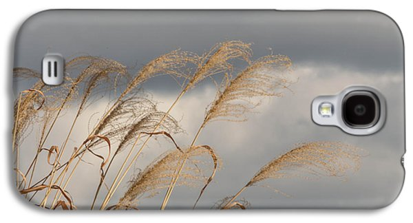 Flags Waving Galaxy S4 Case by Jessica Lowell