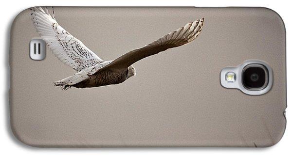 Flight Of The Snowy Owl Galaxy S4 Case by Erin Kohlenberg