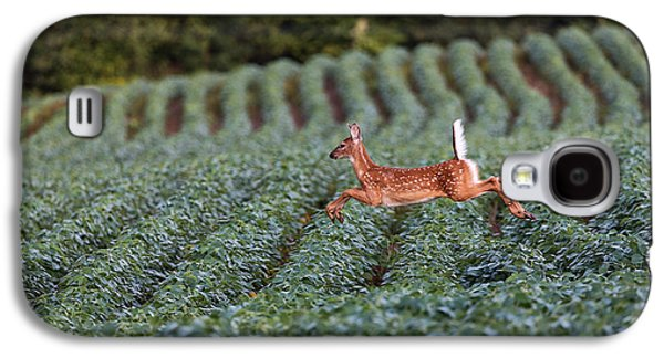 Flight Of The White-tailed Deer Galaxy S4 Case by Everet Regal