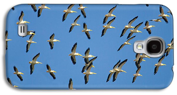 Flock Of Birds Flying In The Sky Galaxy S4 Case by Panoramic Images