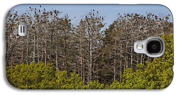 Flock Of Cormorant Birds Perching Galaxy S4 Case by Panoramic Images
