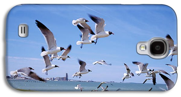 Flock Of Seagulls Flying On The Beach Galaxy S4 Case by Panoramic Images